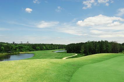 Golf – das Grün (engl. Green)